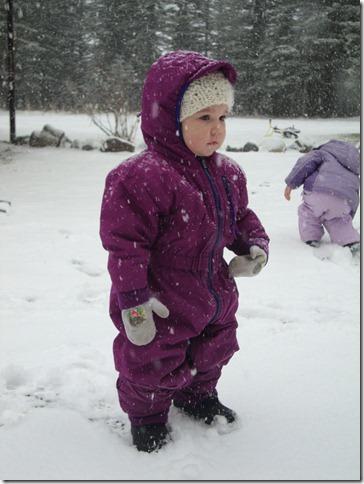 Winter '11-'12 012